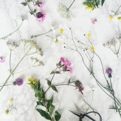 scandinavian feeling hygge flowers flatlay