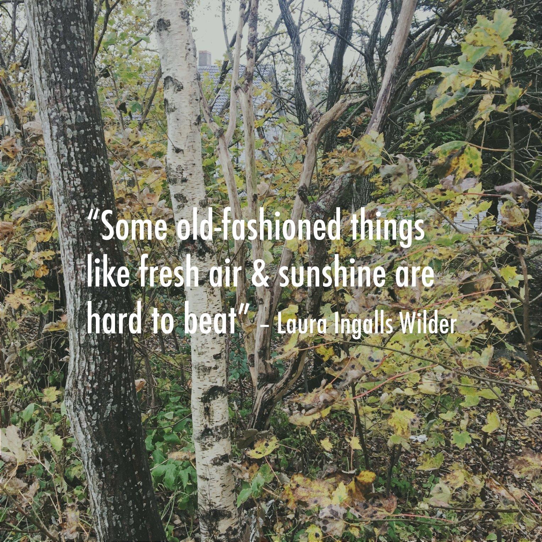 fresh air quote