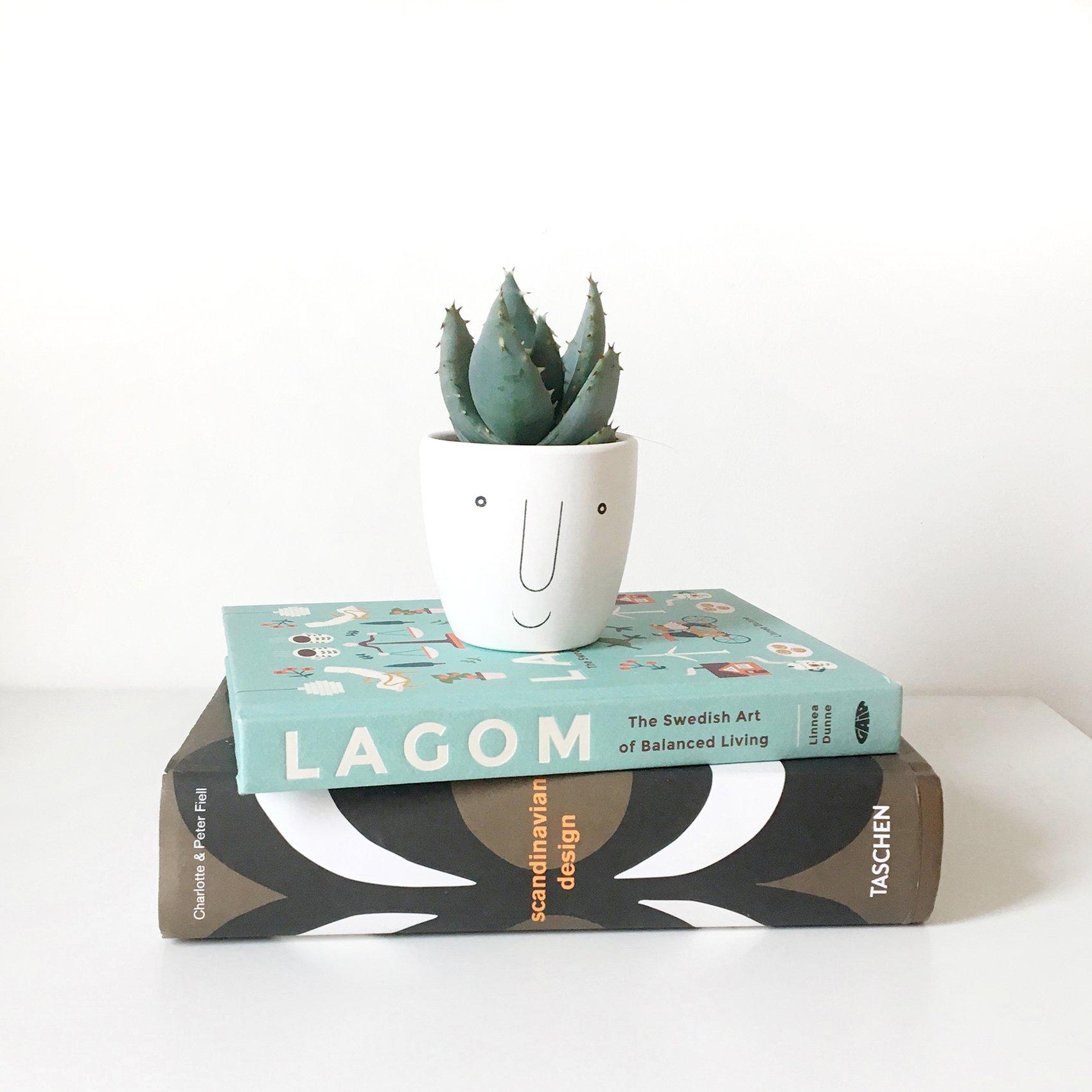scandinavian feeling lagom plant
