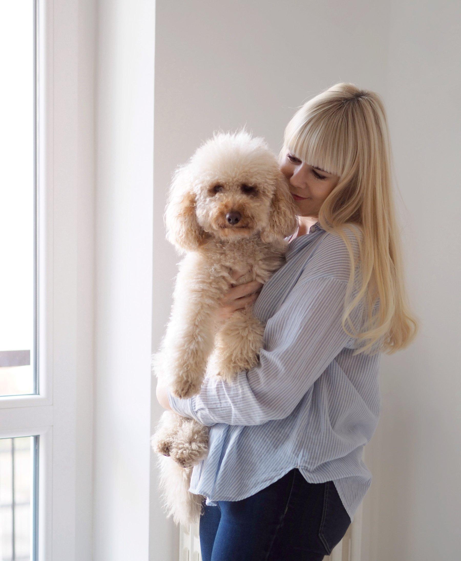 benefits of dogs scandinavian feeling lifestyle