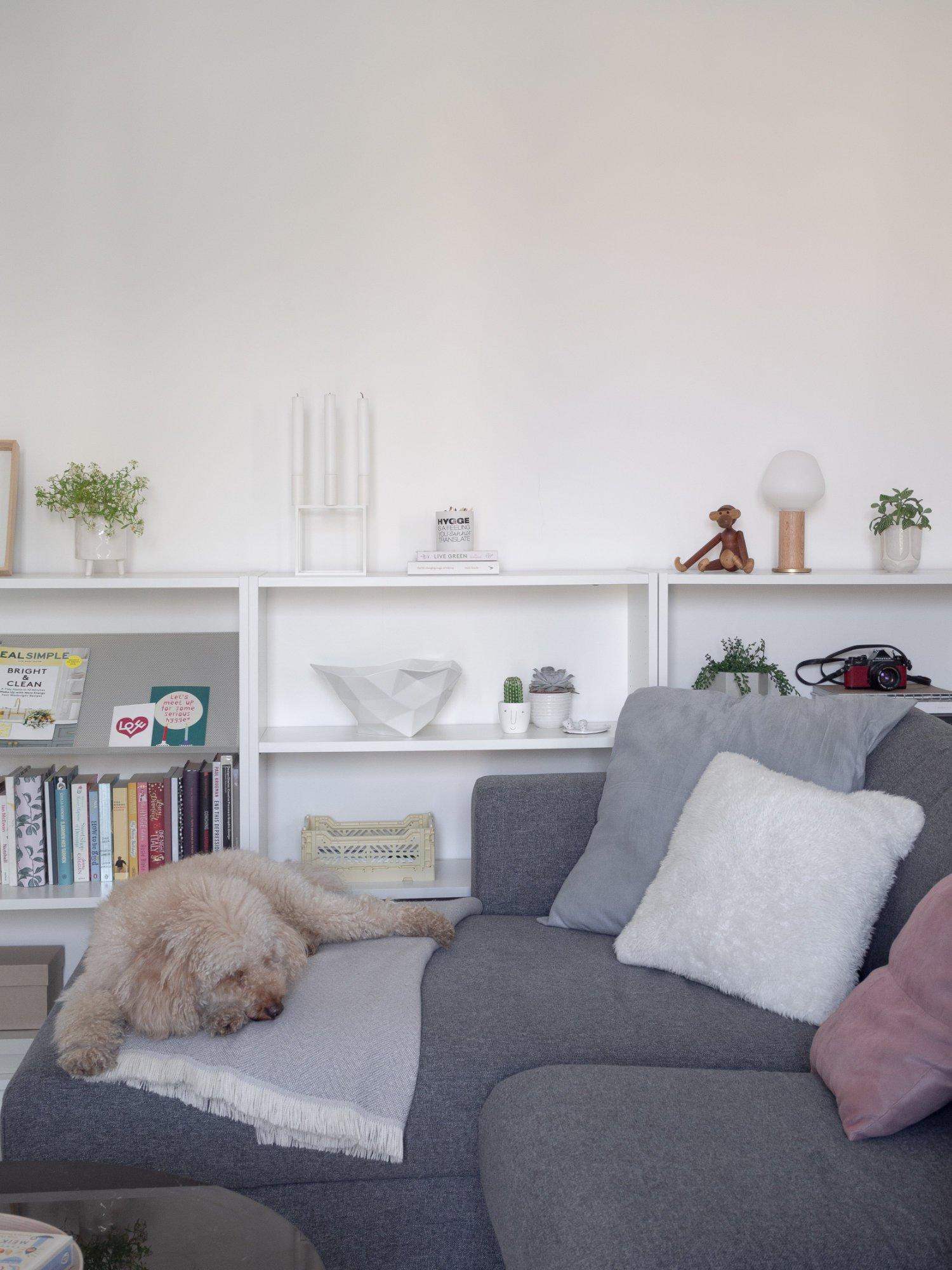 That Scandinavian Feeling Home Tour livingroom sofa dog
