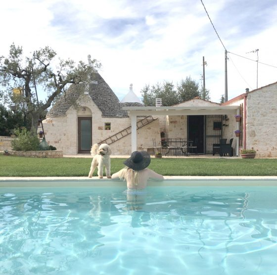 scandinavian feeling trullo puglia italy pool dog