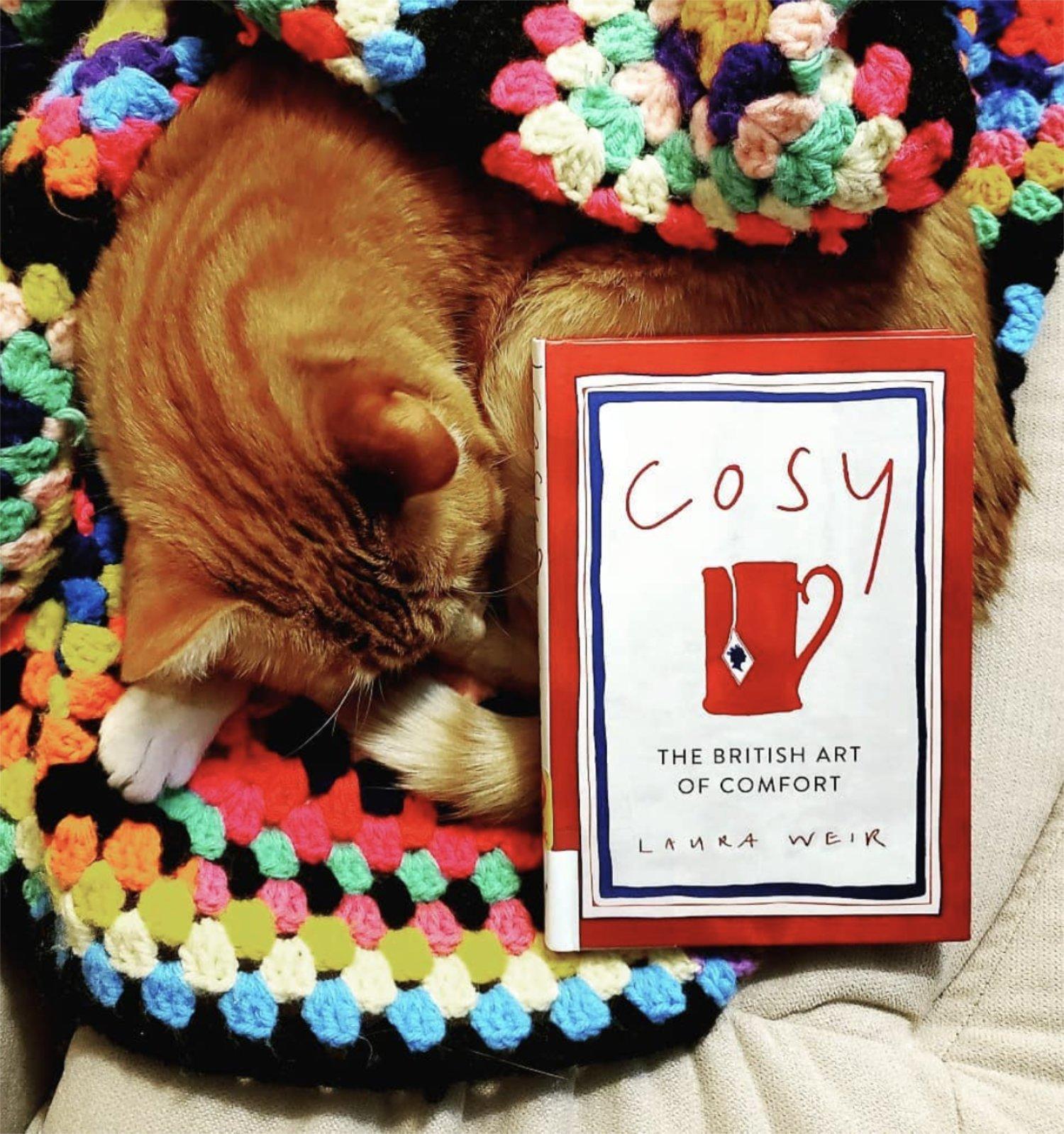 scandinavian feeling best hygge book cozy 9
