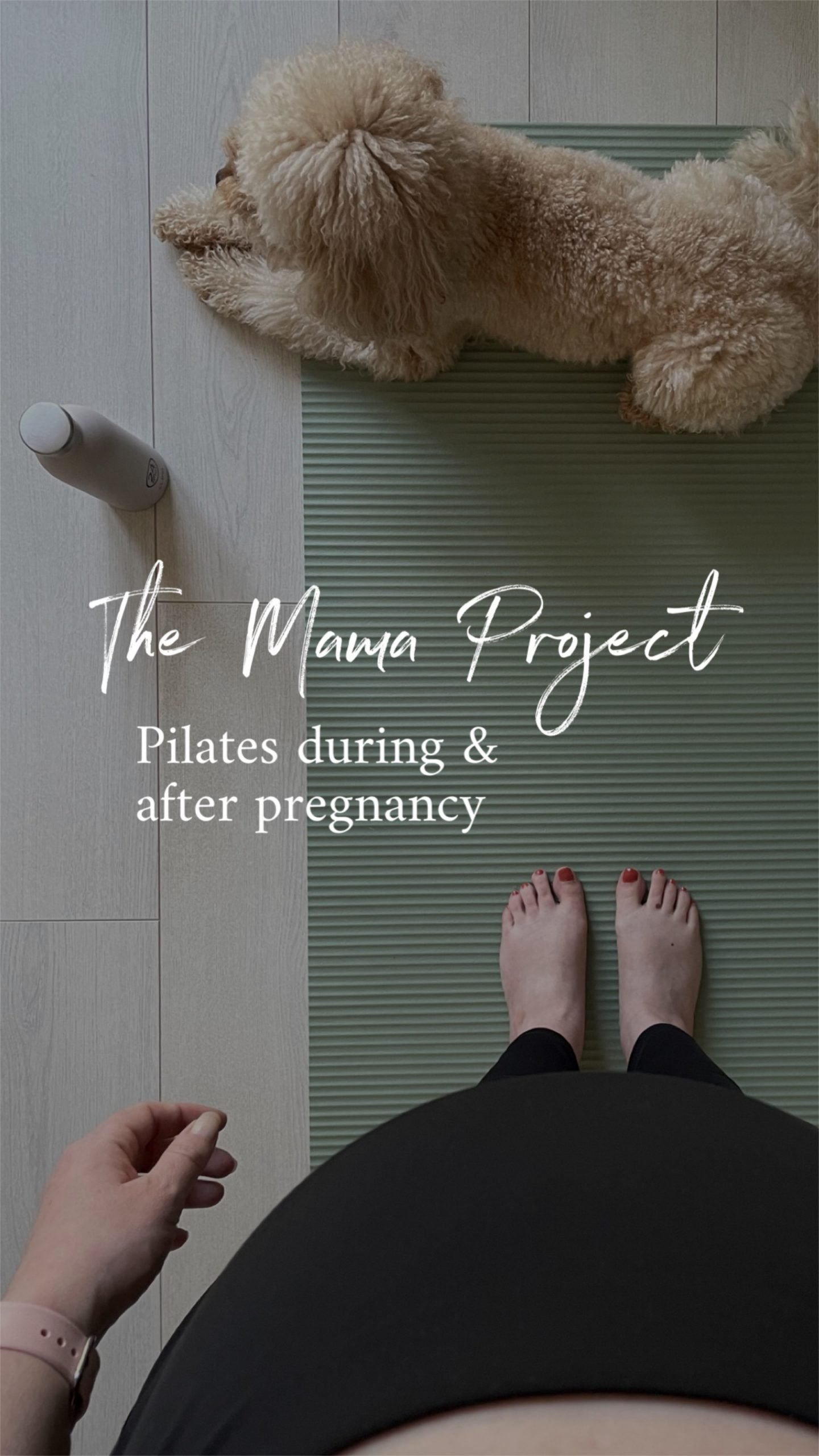 scandinavian feeling mama project pilates home pregnancy 4 scaled