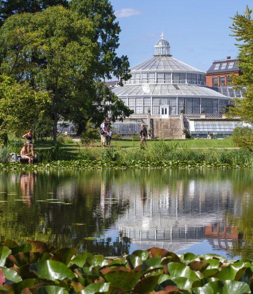 scandinavian feeling travel copenhagen botanical garden